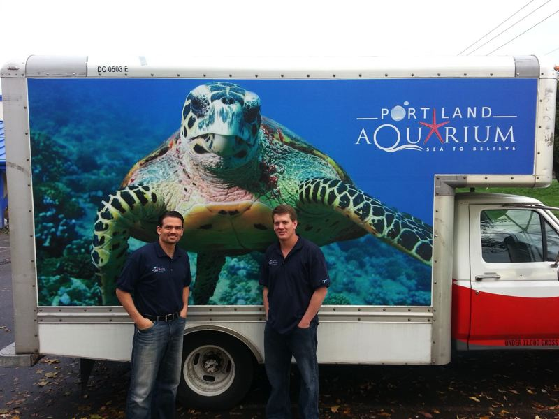 by: COURTESY OF PORTLAND AQUARIUM - Brothers Vince (left) and Ammon Covino expect a big following once their Portland Aquarium in Milwaukie opens. The aquarium will be home to 2,500 species of sea life and wildlife.