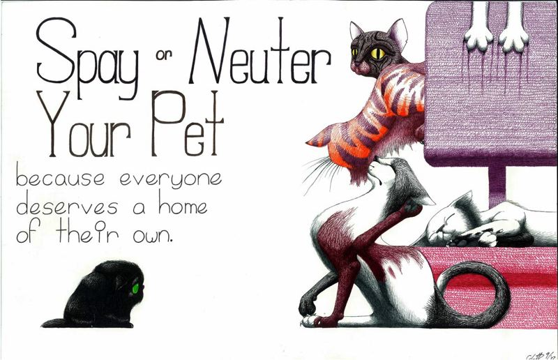 by: PHOTO COURTESY: OREGON HUMANE SOCIETY - This poster encouraging people to spay or neuter their pet wins first place for Carlie Hughes, a junior at Milwaukie High School.
