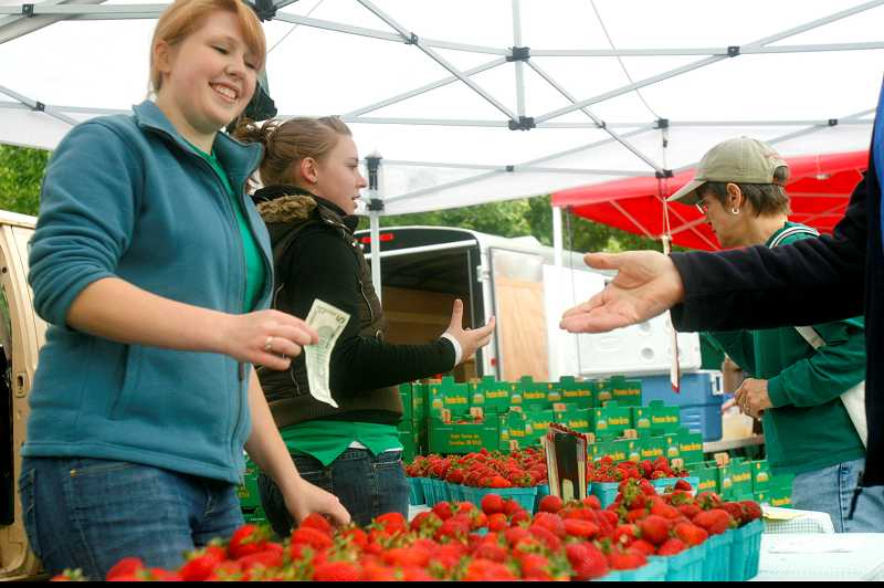 by: TIMES PHOTO: JONATHAN HOUSE - Unger Farms got started selling strawberries at farmers markets in the 1980s. The company also supplies berries to local fruit stands and New Seasons Market.