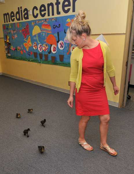 by: REVIEW PHOTO: VERN UYETAKE - Lake Groves Melissa Mullins is followed by her kindergarten classs hatchlings.