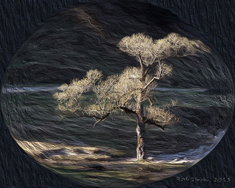 by: CONTRIBUTED PHOTO: ROD STROH - This photo, Lonely Tree, is a photo composite that challenged the photographer to create an image that inspired creative thoughts.