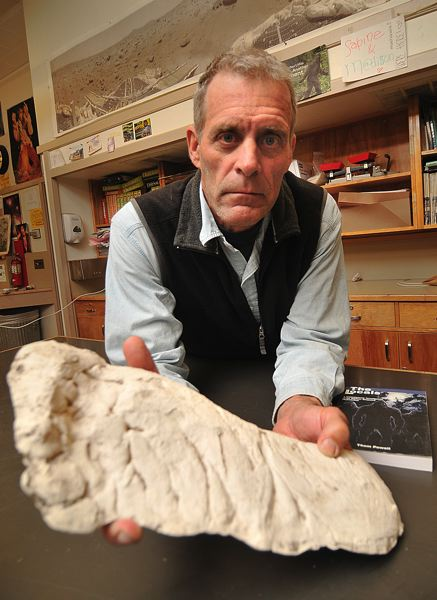by: CONNECTION PHOTO: VERN UYETAKE - Eighth-grade science teacher Thom Powell with a plaster track cast of the Sasquatch in his classroom at Robert