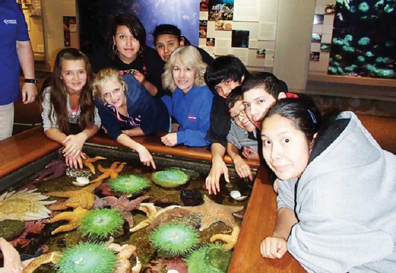 Teacher Chris Renault, center, with JCMS students check out tidal pool creatures at the Oregon Aquarium's touching pool.