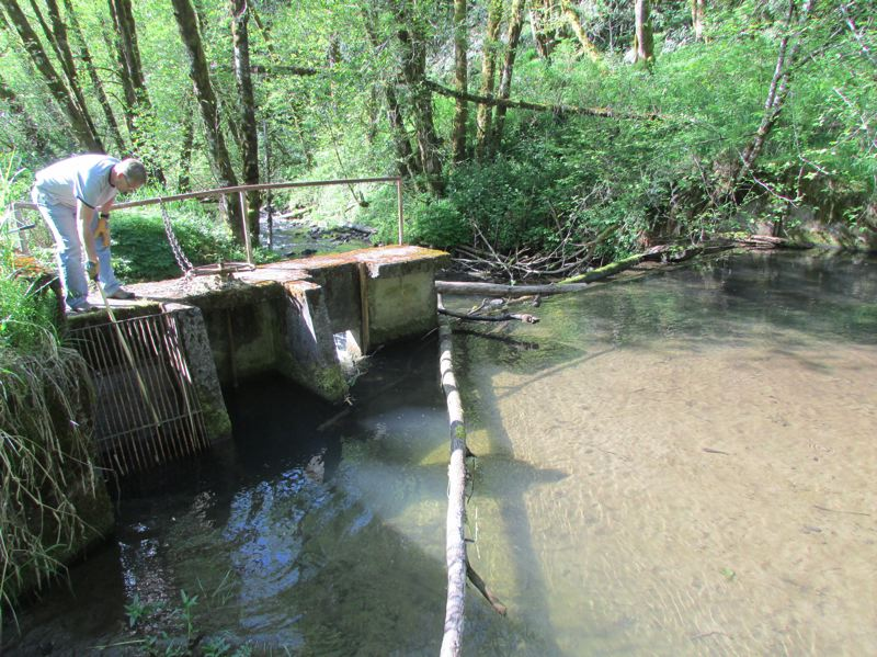 by: SPOTLIGHT PHOTO: ROBIN JOHNSON - The dam on the South Fork Scappoose is in need of maintenance. The water level behind the dam is currently one foot deep, but when sediment is removed, the depth will increase to about four feet, city officials say.