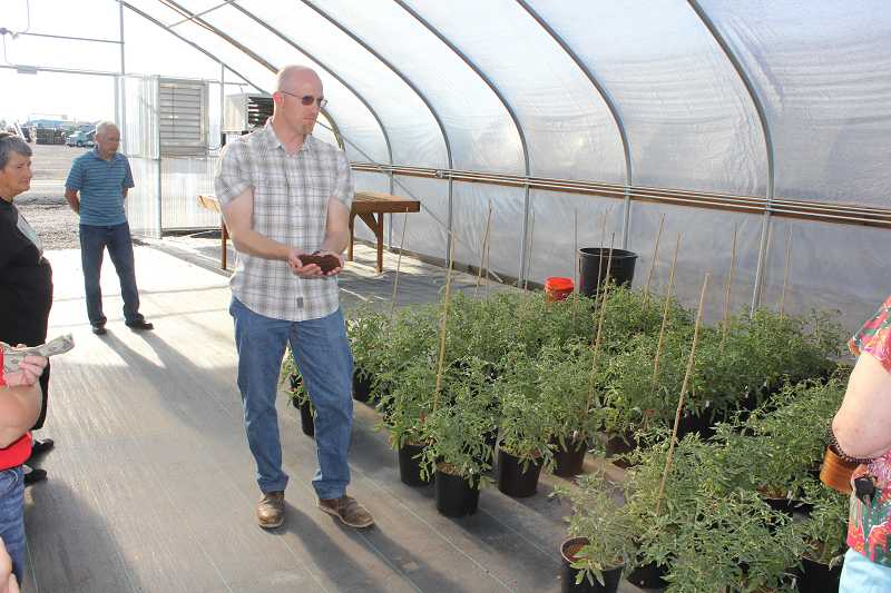 Central Oregon Basalt agronomist Rich Affeldt shows some of the coco coir potting material the Cascade Minerals product is mixed with for trials in the new greenhouse.