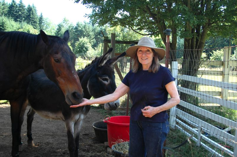 by: ISABEL GAUTSCHI - Kit Collins, co-owner of Out to Pasture Animal sanctuary treats Sergio the donkey and Singer the retired racehorse to some nibbles.