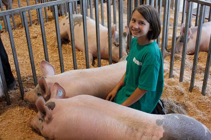 by: PHIL HAWKINS - Fourth-grader Allyson Nicklous of the Green Grazers from St. Paul shows off a pair of pigs at the Marion County Fair in Salem on Thursday.