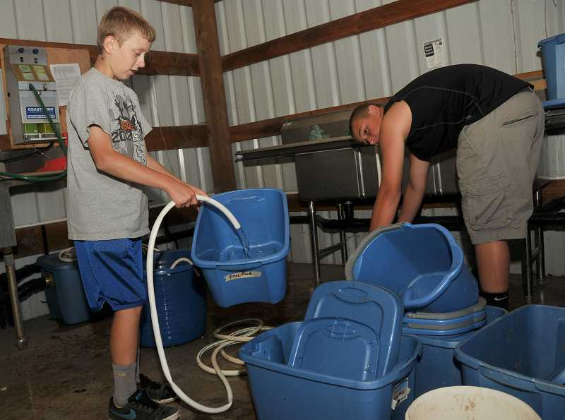 by: PAMPLIN MEDIA GROUP: VERN UYETAKE - Jacob Storm, an eighth-grader, left, and Mathew McCulloch, in ninth grade, carefully wash containers for packing the produce.