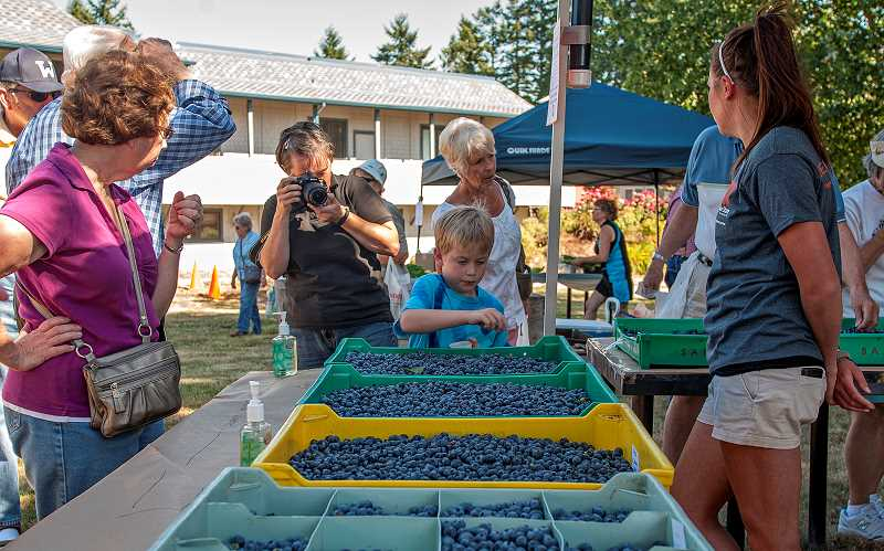 by: JOSH KULLA - Locally grown blueberries enjoyed by visitors of all ages were just one of the many examples of local agriculture on offer at the July 24 open house at the OSU Northwest Research and Extension Center in Charbonneau.