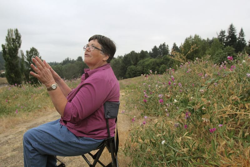 by: TRIBUNE PHOTO: JONATHAN HOUSE - East Portland parks advocate Linda Robinson, sitting down due to hip issues, has worked for years to create a large park and off-road bicycling complex on this unused land near the Gateway transit center.