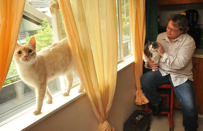 by: VERN UYETAKE - Trish Watson and Jack the cat cuddle in a corner while the curious Remington treads lightly on a window sill.