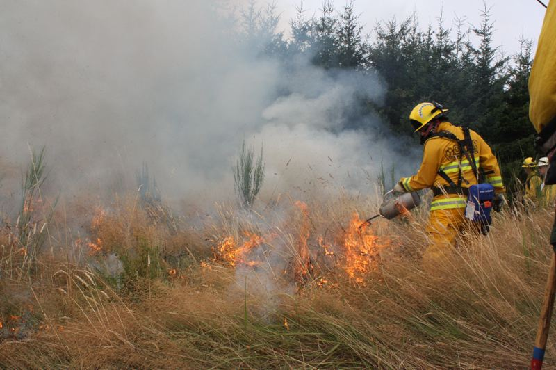 by: SPOTLIGHT PHOTO: ROBIN JOHNSON - Ryan Ridinger, of Columbia River Fire and Rescue, uses a drip torch to burn a line of dry grass in order to contain Saturday's prescribed burn.