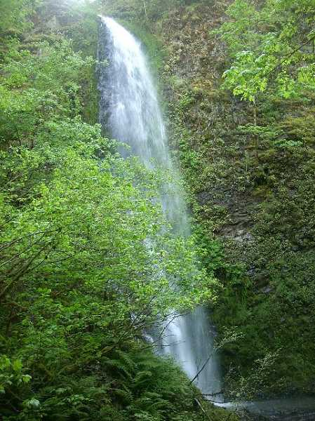 by: KAREN GRAVES - Upper Shotgun Falls, one of many waterfalls in the Molalla River Corridor