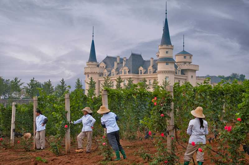 by: COURTESY OF JANIS MIGLAVS - Workers are dressed for filming 'Chateau' in the vineyard at Changyu AFIP Global winery in Ju Gezhuang Town, Beijing city area, Miyun County, China.