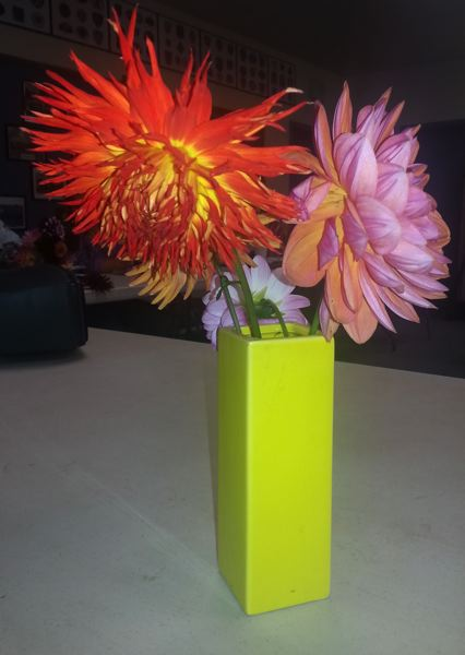 by: OUTLOOK PHOTO: CARI HACHMANN - A Garden Club member brings flowers from her garden to share.