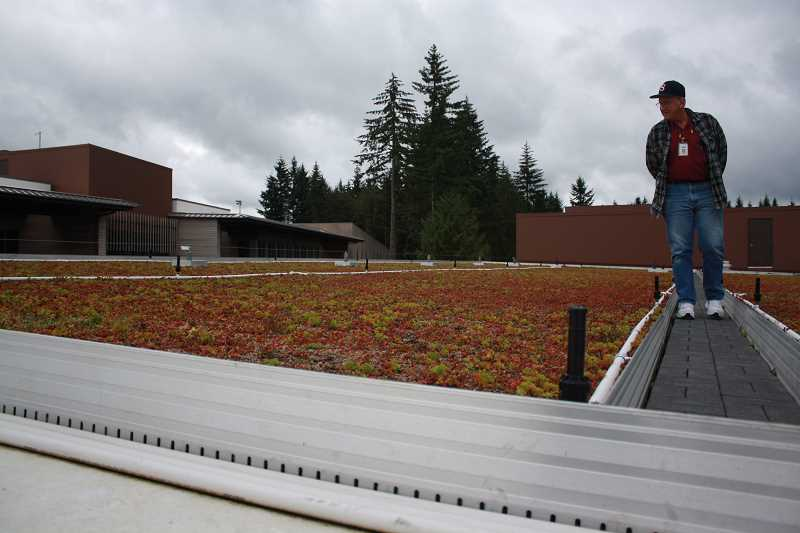 by: POST PHOTO: NEIL ZAWICKI - Facilities Maintenance technician Tom Newell examines the green roof at Sandy High School on Sept. 23. The 8,000 square-foot surface prepares and then percolates rainwater for consumption in the building.