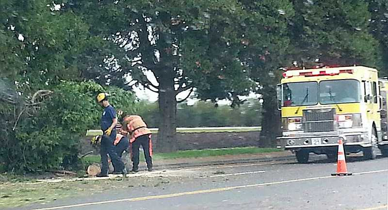 by: COURTESY OF JOEL MONROY - Firefighters clear fallen trees along Highway 99E near MacLaren Youth Correctional Facility this weekend.