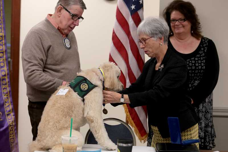 by: TIMES PHOTO: JONATHAN HOUSE - Rotary District Governer Sharon Starr presents Darlin with a medal for earning the Paul Harris Fellowship for her work as a therapy animal in area hospitals.