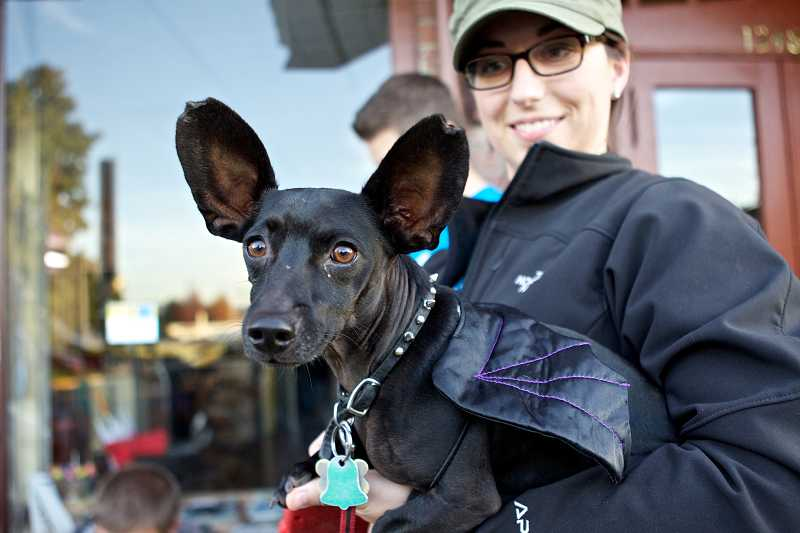 by: TIMES PHOTO: JAIME VALDEZ - Radar, a dachshund-chihuahua mix dressed as a bat being held by Mallory Mazenkas, is all ears before the dog costume competition on Friday.