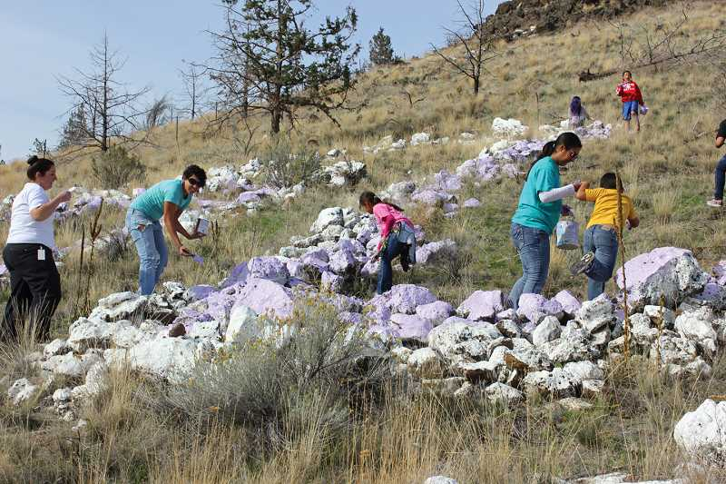 Volunteers repainted the white 'M' on the hill west of Madras with lavender paint Oct. 10, in observance of Domestic Violence Awareness Month in October, which is symbolized by the color purple. The rocks will be painted white again at the end of the month.