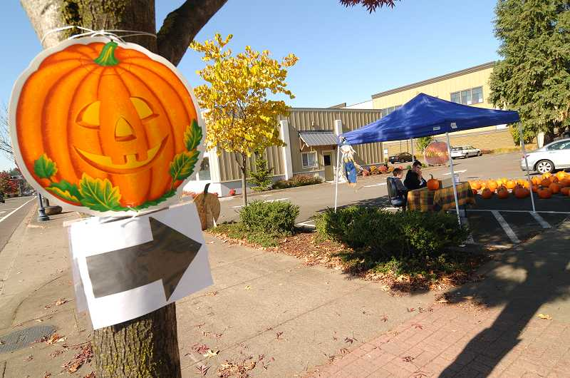 by: PAMPLIN MEDIA GROUP: VERN UYETAKE - Aaron Puppo set up a pumpkin stand in the parking lot of his dad's business on Southwest Wilsonville Road.