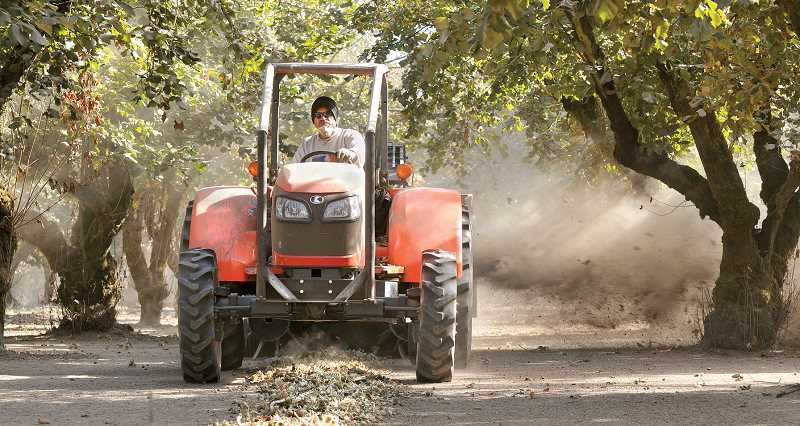 by: FILE PHOTO - Sweeping up profits - The filbert harvest is almost complete this season. Although the crop might be damaged from late, heavy rains, Willamette Hazelnut Growers expect the yield to be up 8 percent from last year.