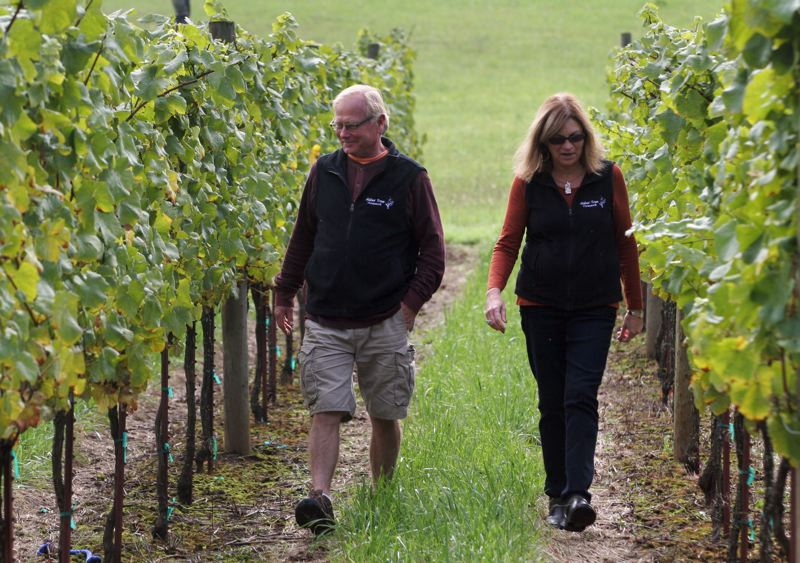 by: OUTLOOK PHOTO: JIM CLARK - Terry and Debbie Lorentson started with four rows of vines in 1995, to see if Pinot grapes would grow on their property, which sits at an elevation of 750 feet.
