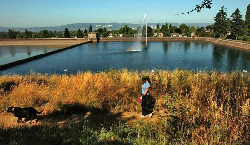 by: TRIBUNE FILE PHOTO - Some of the supporters of the Portland Public Water District are opposed to capping reservoirs at Mt. Tabor and Washington parks. Yet many experts in such big capital improvement projects would be barred from running for the board.