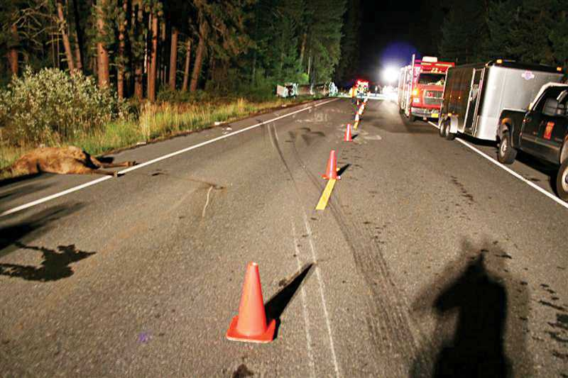 by: PHOTO COURTESY OF OREGON STATE POLICE - A collision between a fuel tanker truck and an elk, on U.S. Highway 26, about 23 miles northwest of Warm Springs, resulted in a 5,000 gallon spill.