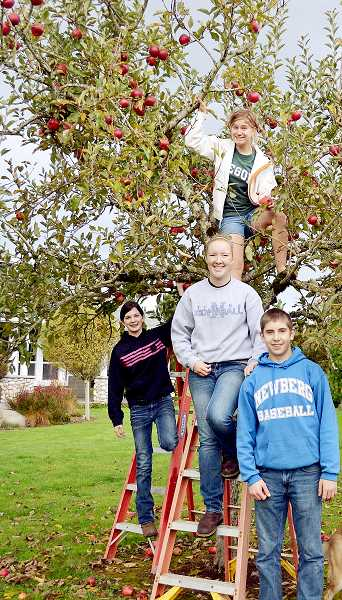 by: SUBMITTED PHOTO - Lend a picking hand - Newberg FFA students (from left to right) Tia Piscitelli, Madison Plummer, Margaret Halstead and John Lombardo volunteered to pick apples from the small orchard at local resident Carrie Looney's home Nov. 2. The group harvested 617 pounds of apples to donate to Newberg F.I.S.H. Looney wanted to donate the apples so they wouldn't go to waste, but did not have the manpower to do it, prompting her to reach out to the local FFA chapter. 'They showed up happy and willing to work,' Looney said. 'It was incredibly impressive. They were hardworking and just a great group of kids.'