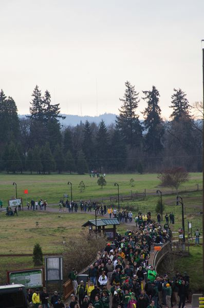 by: COURTESY OF MEG WILLIAMS - A trail of fans makes its way to Autzen Stadium.