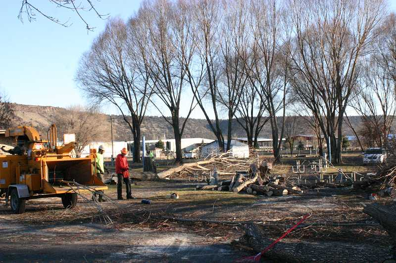 by: JASON CHANEY - Tree removal efforts are already under way at the Crook County RV Park.