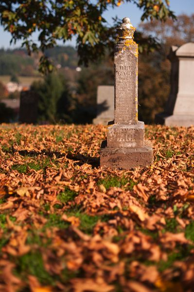 by: SPOKESMAN PHOTO: JOSH KULLA - Fall in Wilsonville meant visiting the numerous pioneer cemeteries in the area, including the Robert Bird Cemetery in Stafford.