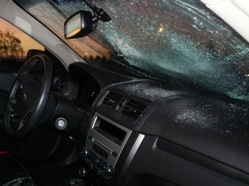 by: OREGON STATE POLICE - Victoria Lohmann jumped on top of this vehicle with enough force to break the windshield.