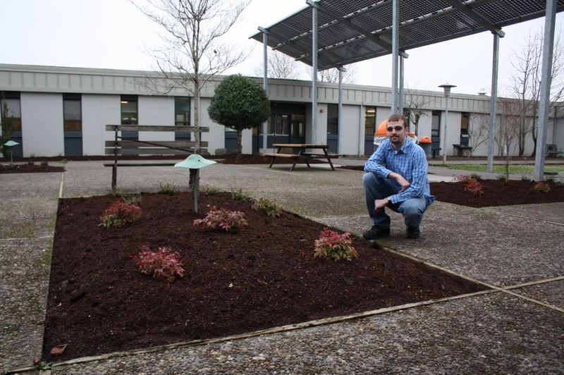 by: SPOTLIGHT PHOTO: ROBIN JOHNSON - Zach Ogle, a senior at Scappoose High School, said in addition to moving forward with landscaping the other half of the school's courtyard, he plans on adding more plants to each existing plot.