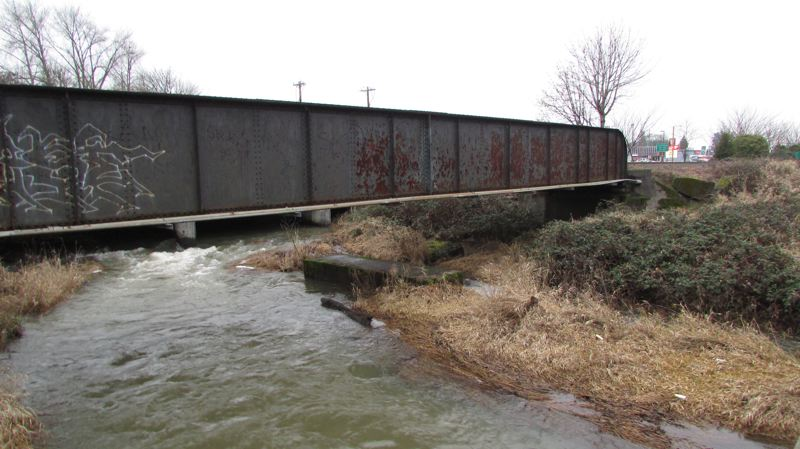 by: SPOTLIGHT PHOTO: MARK MILLER - The rail bridge over Milton Creek in St. Helens, as seen from the side of Milton Way. An unused concrete foundation that used to anchor an auxiliary bridge support can be seen underneath the bridge's midpoint. Spokesmen for Genesee & Wyoming Inc., which owns the railroad, and the Federal Railroad Administration said the center support is not needed for bridge safety and that recent inspections of the structure indicated no problems, but a small group of Columbia County residents led by Deer Island ex-ironworker Jamie Maygra say they believe the bridge is unsafe.