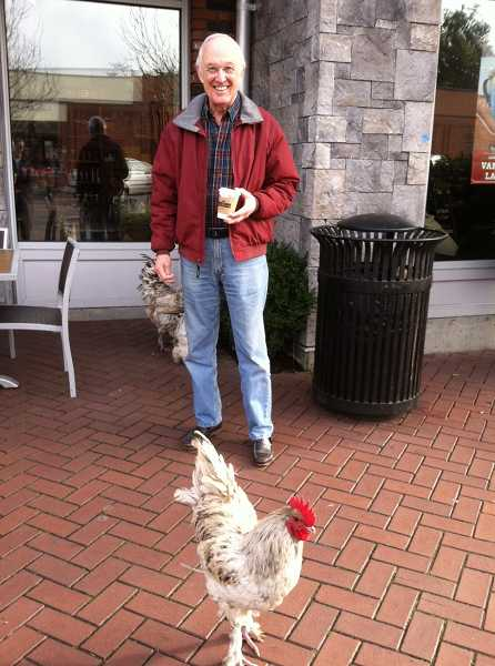by: SUBMITTED PHOTO - Dave Schramm gives a big smile after discovering three roosters in front of Peets Coffee in Lake View Village.The roosters managed to surprise a lot of people.