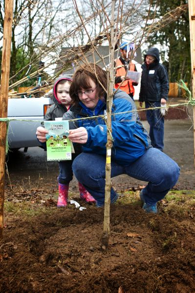 by: TRIBUNE PHOTO: JAIME VALDEZ - Julia Jost watches her mom, Kristin, place a Friends of Trees sticker next to a tree they helped plant in Southeast Portland as part of a Saturday volunteer effort. By afternoon, the group of volunteers had planted a free tree in the Josts front yard public right of way.