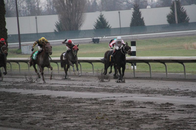 by: COURTESY OF ARLYN MALDONADO - Eliska Kubinova leads her horse down the stretch to the finish line on a muddy day during the recently ended Portland Meadows season.
