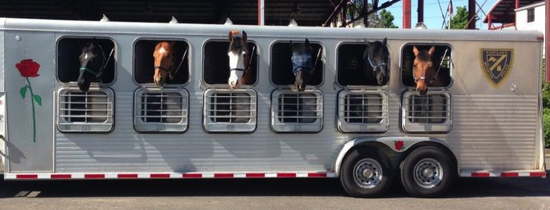 by: PORTLAND POLICE BUREAU - Horses with the Mounted Patrol Unit are now commuting to work every day in a trailer from Aurora.