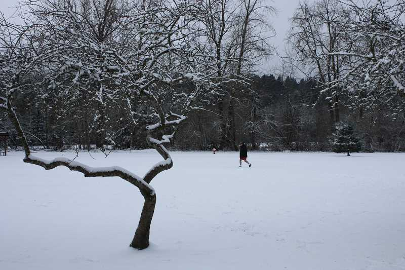 by: TIDINGS PHOTO: LORI HALL - The snow and cold weather didn't deter folks from visiting Mary S. Young State Park Friday morning. This gentleman wearing shorts didn't seemed phased by the turn of weather.