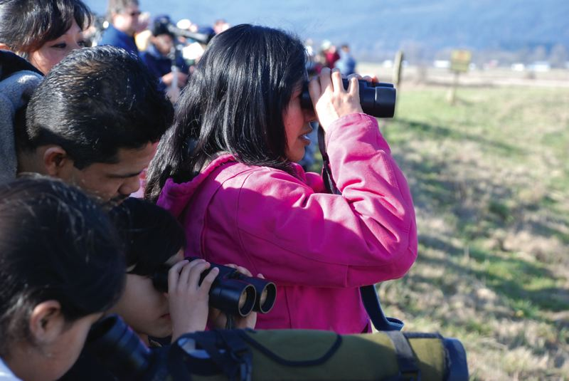 by: SUBMITTED PHOTO - Attendees of the 2013 Raptor Road Trip peer through binoculars at local birds on Sauvie Island.