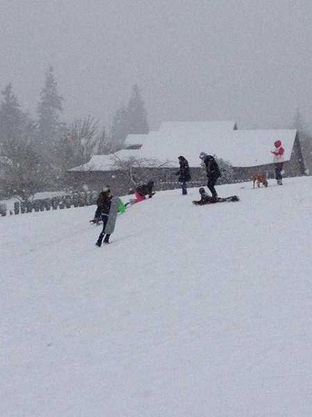 by: COURTESY CITY OF SHERWOOD - These kids had fun sleding down a hill at Murdock Park on Feb. 6.