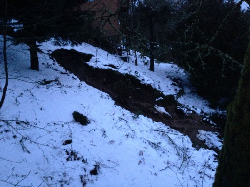 by: SUBMITTED PHOTO: LAKE OSWEGO FIRE DEPARTMENT - A landslide occurred between homes on Meadows Drive and Upper Cherry Lane in Lake Oswego on Monday.