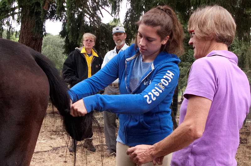 by: SUBMITTED PHOTO  - Claudia Howell, right, shows just how to tie a knot in the tail of a polo pony. She will be providing her expertise at Lake Oswego Hunt for a clinic on March 9.