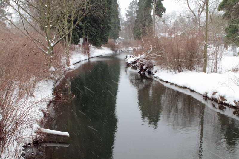 by: DAVID F. ASHTON - Looking along Crystal Springs Creek, the early February snowstorm turned Westmoreland Park into an even more picturesque natural area.