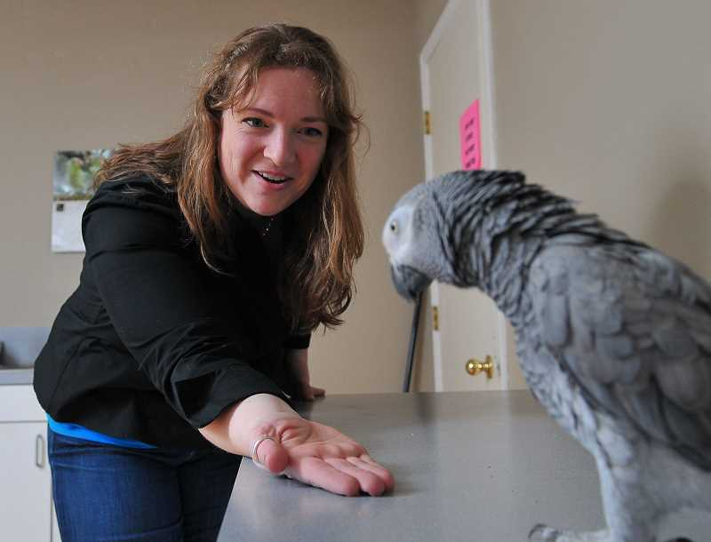 by: REVIEW, TIDINGS PHOTOS: VERN UYETAKE - Kelly Ballance is planning a big future for Jericho the Congo African Gray Parrot. He will be her partner at kids camps this summer.