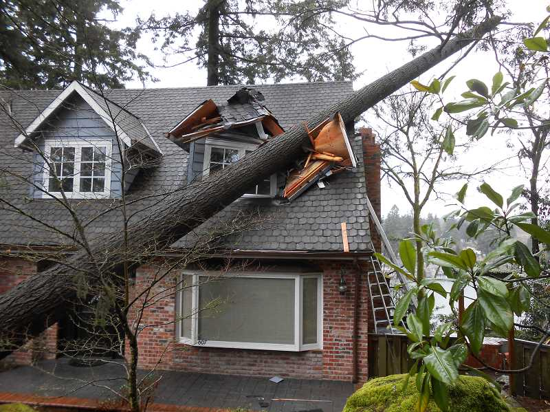 by: REVIEW PHOTO: CLIFF NEWELL - An upstairs bedroom was damaged by a tree falling on a home on Middlecrest Road during the high winds that occurred on Thursday. Another fallen tree blocked traffic on A Avenue.