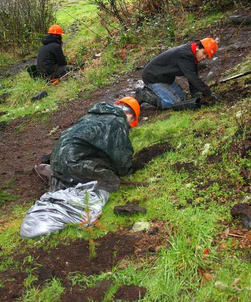 by: BILL TAYLOR - Youth Conservation Corp members plant trees on one of the dispersed campground sites