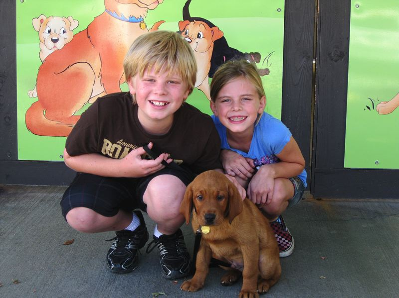 by: PHOTO COURTESY OF THE ARABIA FAMILY - Cole Arabia and his sister, Kelsi, are shown here with Gabriel, a Labrador retriever that Cole helped train to become a guide dog for the blind.